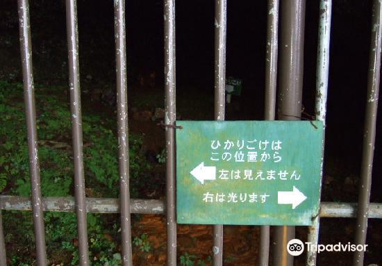 Maccaus Cave2