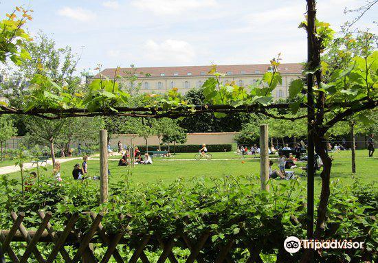 Jardin Catherine Labouré4