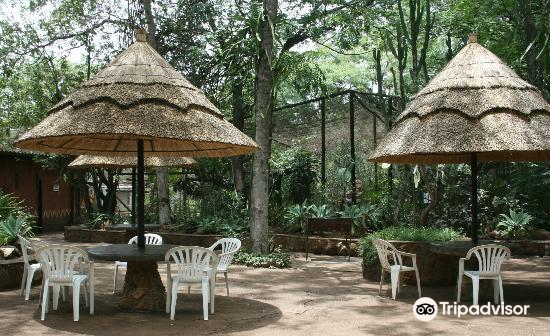 Chipangali Wildlife Orphanage and Research Centre