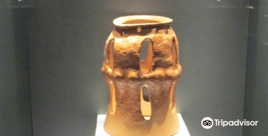 Cucuteni Neolithic Art Museum3