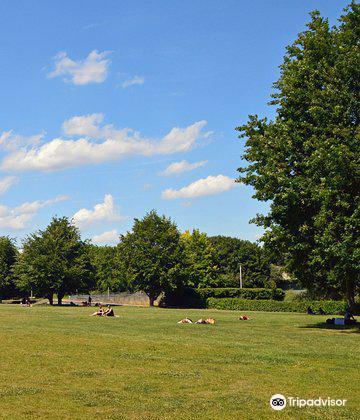 Parc Henri Matisse3