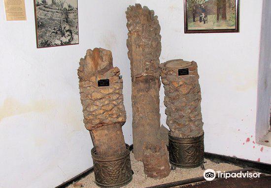 Museo Bolivariano de Pativilca3