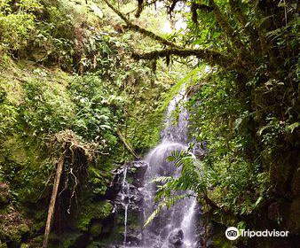 Refugio de Vida Silvestre Cerro Dantas
