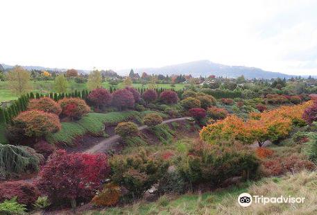 Rotorua Centennial Park