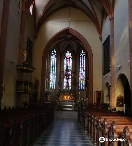 Maribor Cathedral (Church of St John the Baptist)2
