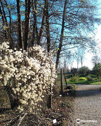 Botanical Garden of University of Maribor4