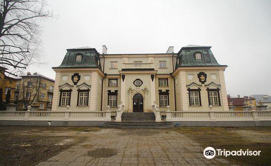 Lubomirskich Summer Palace (Letni Palac Lubomirskich)4