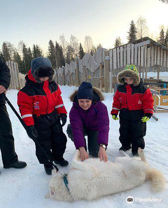 Lapland Safaris Luosto2