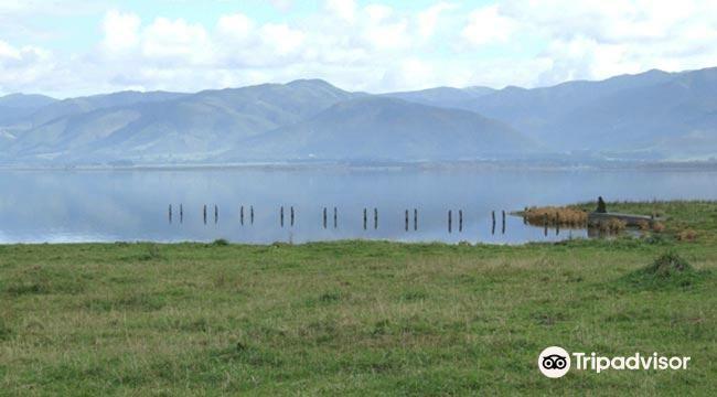 Lake Wairarapa4