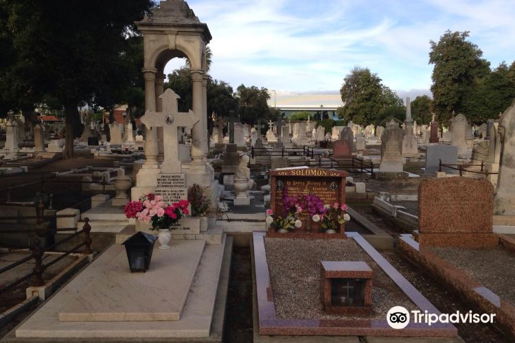 West Terrace Cemetery3