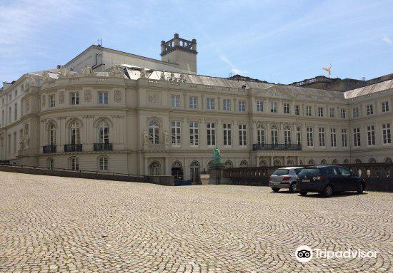 Palace of Charles of Lorraine1