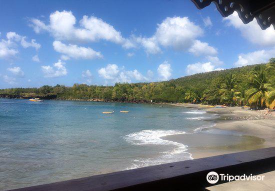 Anse Cochon Beach2