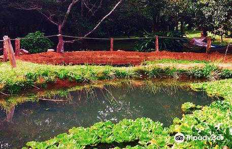 Hidden Valley Permaculture Farm