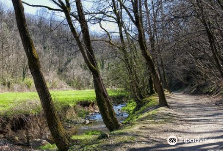 Sentiero 6 - Valbasca