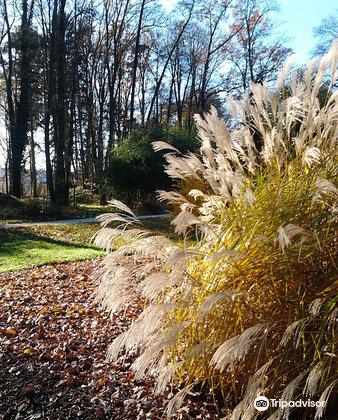 Botanical Garden of University of Maribor3