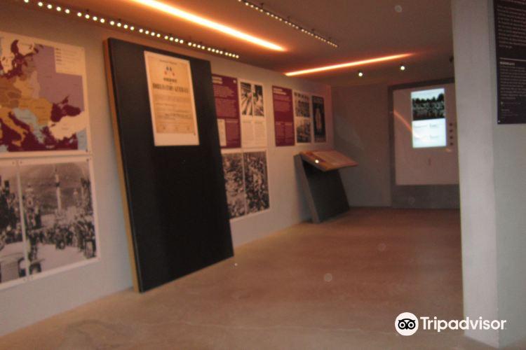 抵抗和驅逐博物館4