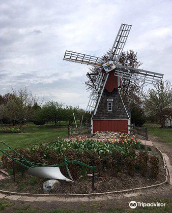 Veldheer Tulip Garden4
