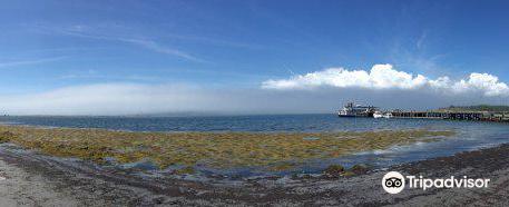 McNab's Island