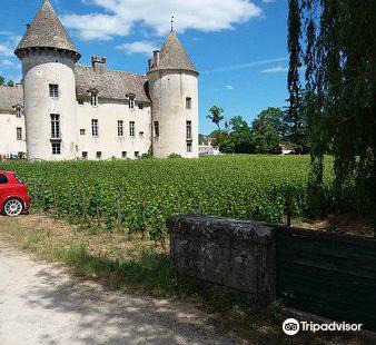 Museums du Castle de Savigny-les-Beaune