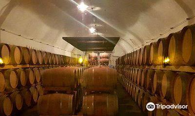 Recas Wine Cellar