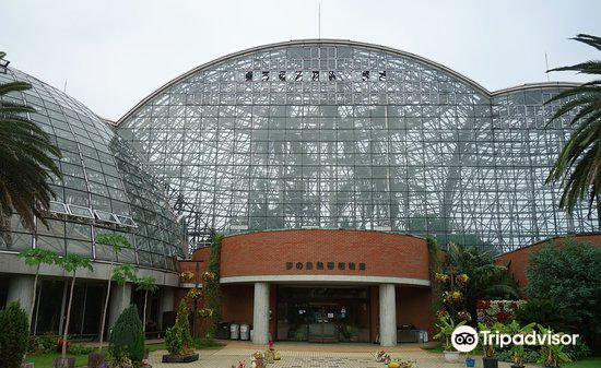 夢の島熱帯植物館3