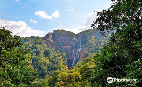 Udzungwa Mountains National Park2