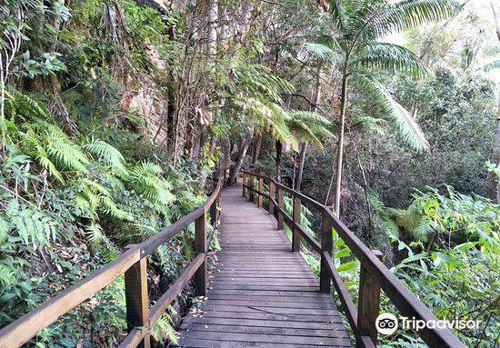 Cania Gorge National Park3