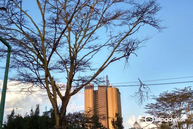 奈洛比大學1
