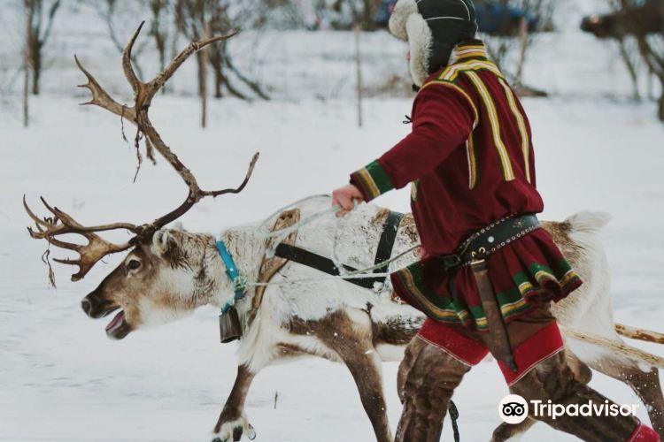 Tromso Lapland2