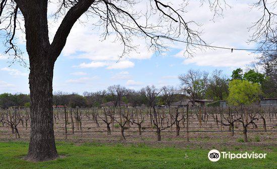 Val Verde Winery