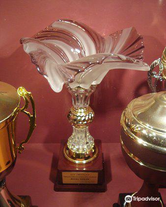 Sports trophies of Adam Malysz4