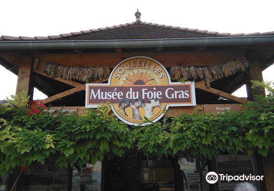 Musée du Foie Gras4