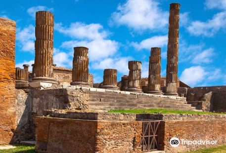 Visit Pompeii - Guided Day Tours