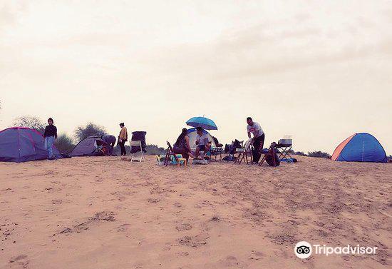 Al Qudra Lake1
