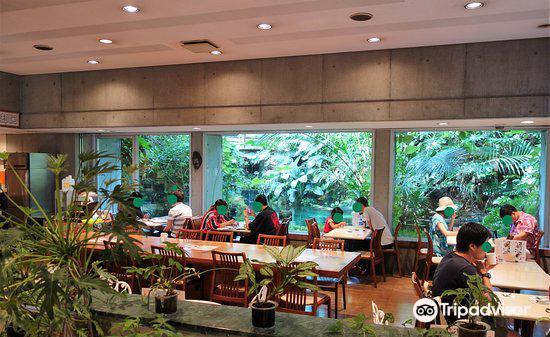 夢の島熱帯植物館1