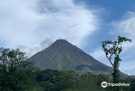 Arenal Canopy Adventure (ATHICA Canopy Tour)