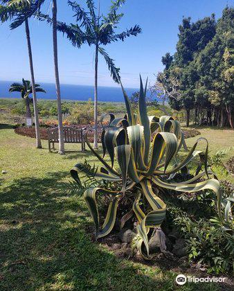 Paleaku Gardens Peace Sanctuary3