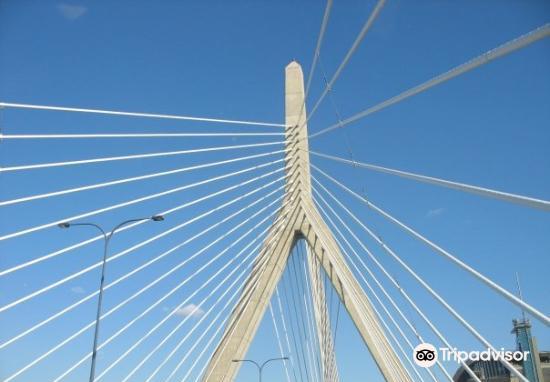 扎基姆邦克山橋4