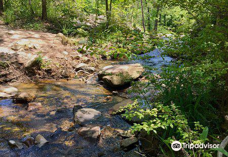 Moss Rock Preserve & Waterfalls