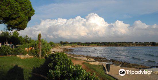 Pinesta Beach