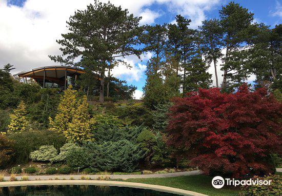 Royal Botanical Garden(Canada)1