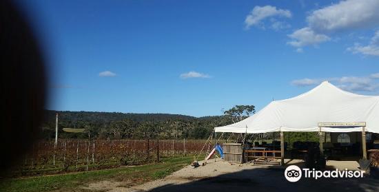 Spring Vale Wines2