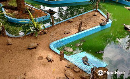 Getulio Vargas zoo
